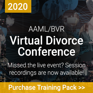 Virtual Conference Training Pack Website Ad (10-20)