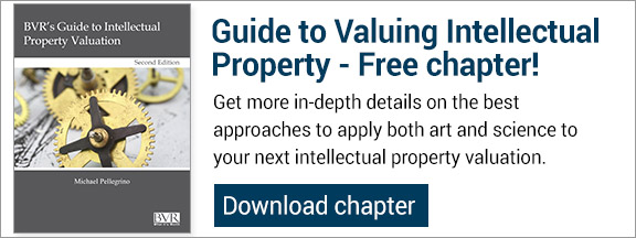 Free IP guide chapter