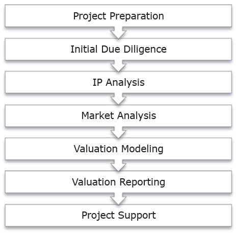 IP valuation process chart