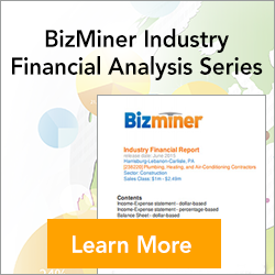 Bizminer Industry Financial Series Reports
