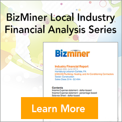 Bizminer Local Industry Financial Series Reports