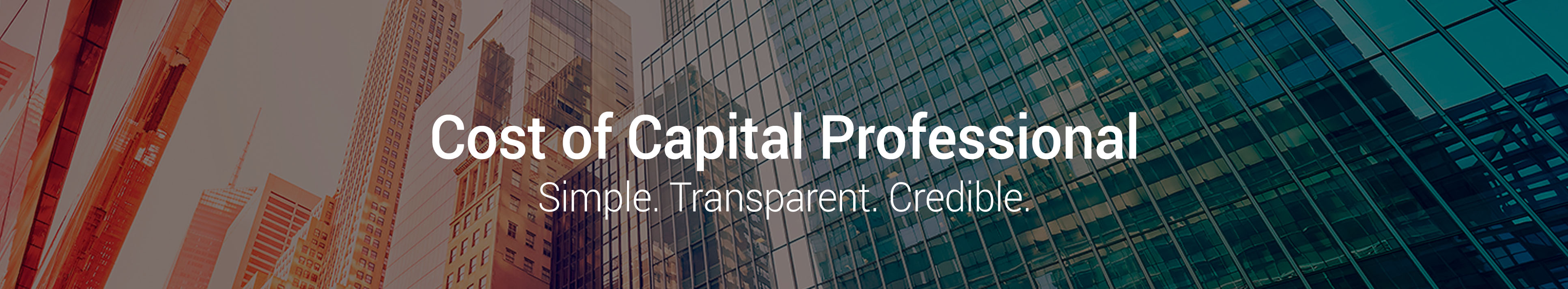 Cost of Capital Pro Platform