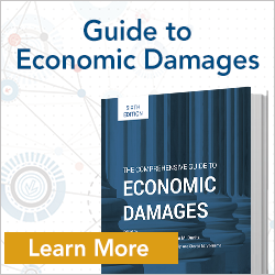 Economic Damages 6th Edition