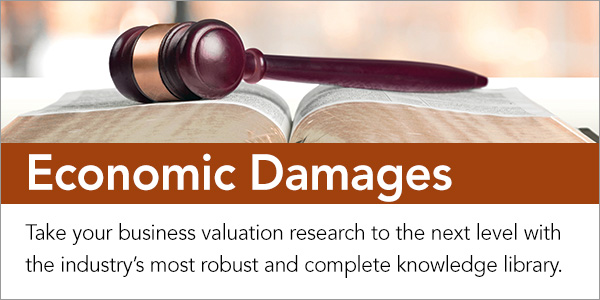 Guide to Economic Damages