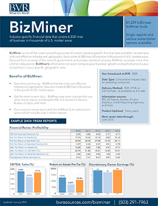 BizMiner  Industry Report Summary Sheet