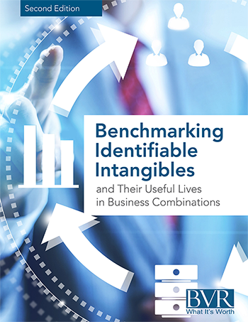 Benchmark Identifiable Intangibles (Second Edition 2015)