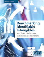 Benchmarking Identifiable Intangibles (Second Edition 2015)