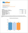 BizMiner Local Industry Financial Report