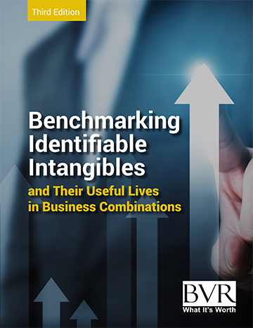 Benchmarking Intangibles 2021
