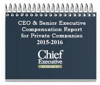 CEO and Senior Executive Compensation Report