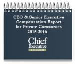 CEO and Senior Executive Compensation Report