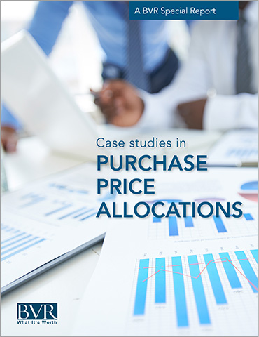 Case Studies in Purchase Price Allocations Special Report
