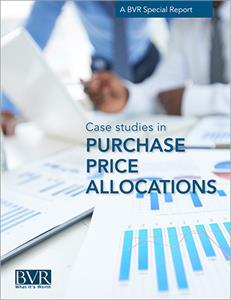 Purchase Price Allocations Excerpt