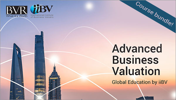 Advanced Business Valuation Global eLearning Bundle