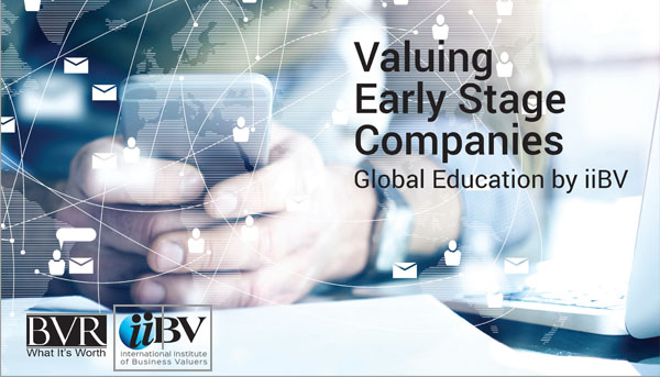 Early Stage Companies eLearning