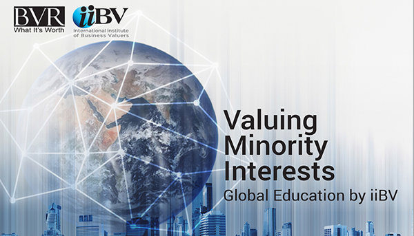 Valuing Minority Interests