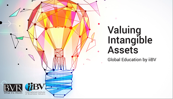 Valuing Intangible Assets eLearning